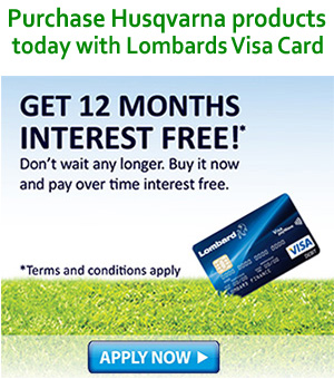 lombards_visa_card_ad