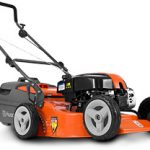Husqvarna LC19 Lawnmower
